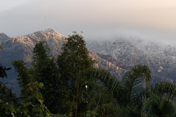 Snow, in Santa Barbara