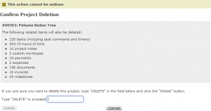 Project deletion confirmation