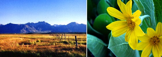 Eastern Sierra Land Trust Partnership Story