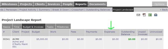 Project Landscape Report - Expenses Column